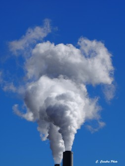 Plumes from coal fired power plant