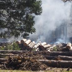 Constant burning of debris