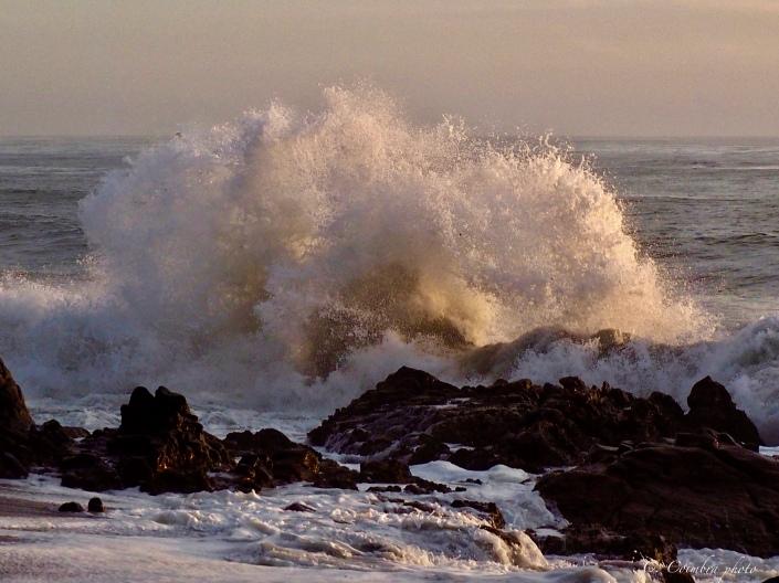 Splash at Moonstone Beach